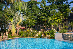 Swimming pool . Thailand . Royalty Free Stock Photo
