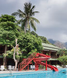 Swimming pool in tropical Stock Images