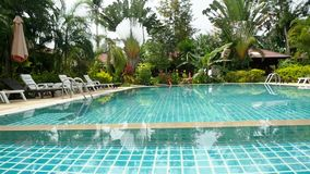 Swimming pool in tropical garden with bungalows and sunbeds - paradise for tourists. butterfly flying. slow motion. Swimming pool in tropical garden with bamboo stock video
