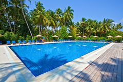 Swimming pool in a tropical hotel Stock Images