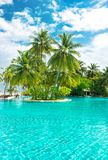 Swimming pool tropical plants palm trees cloudy blue sky. Swimming pool with tropical plants and palm trees over cloudy blue sky Stock Photo
