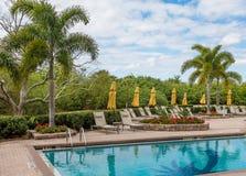 Swimming Pool at Tropical Resort. Resort swimming pool at a nice tropical resort Stock Image