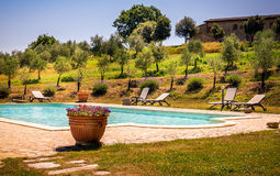 Swimming pool and tuscan nature Royalty Free Stock Images