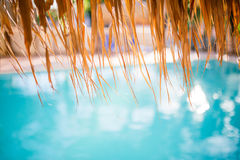 Swimming pool under the straw umbrella. Tropical resort background. Shallow depth of field stock images