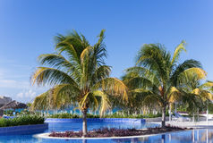 Swimming pool view with view of the caribbean oceanr in Cuba Royalty Free Stock Images