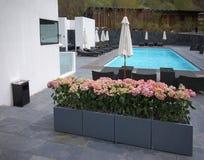 Swimming pool in Villa Stock Photos