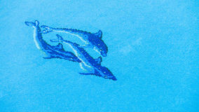 Swimming pool water with dolphins background Stock Images