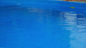 Swimming pool water in slow motion stock video footage