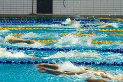Swimming pool . Stock Images