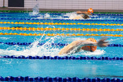 Swimming pool . Royalty Free Stock Photo