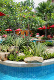 Swimming pool in a wonderful garden Stock Images