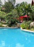 Swimming pool in a wonderful garden Stock Image