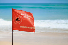 Swimming prohibited flag Stock Image
