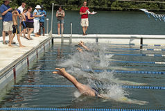 Swimming Race Diving Stock Images