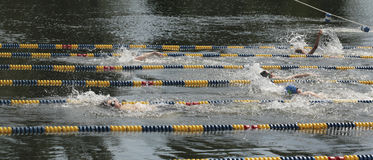 Swimming Race Stock Photo