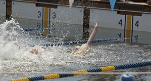 Swimming Race Royalty Free Stock Photography