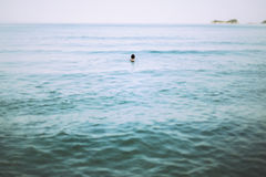 Swimming in the sea Royalty Free Stock Image