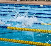 Swimming at pool, Sporty concept Royalty Free Stock Photo
