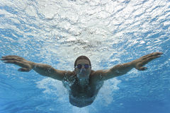Swimming - Sport Stock Photography