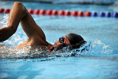 Swimming - Sport. Sport man swimming in freestyle Stock Photography