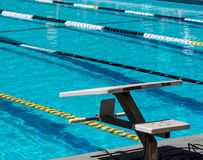 Swimming starting blocks Stock Image