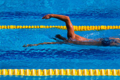Swimming - Stock Image Royalty Free Stock Images