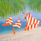 Swimming suit with glasses hanging on rope Royalty Free Stock Image