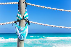Swimming suit hanging on the white ropes of pier Stock Images