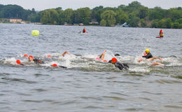 Swimming Triathletes. A group of elite athletes begin the first leg of the 2014 Sprint Triathlon in Pewaukee, Wisconsin Royalty Free Stock Photos