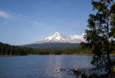 Swimming in Trillium Lake Stock Photo