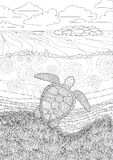 Swimming turtle for anti stress Coloring. Swimming sea turtle for anti stress Coloring Page with high details, isolated on the underwater oceanic background Stock Photos