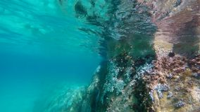 Snorkeling underwater in the blue sea in Greece. Swimming underwater in the blue Aegean sea in Greece. Filmed with GoPro. Marine life and rocks visible sea stock video footage