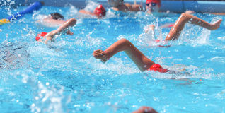 Swimming warm up Stock Image