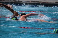 Swimming, Water, Leisure, Sports stock image