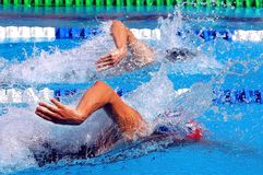 Swimming in waterpool with blue water. Swimming, freestyle in waterpool with blue water stock image