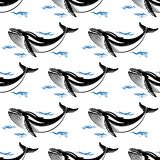 Swimming whale seamless pattern. With a baleen whale amongst ocean waves in square format for nautical themed wallpaper or fabric design Royalty Free Stock Photo