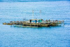 Pearl farm, floating on Pacific Ocean, Indonesia royalty free stock photo