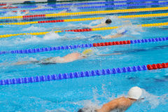 Swimming: A young athletes is swimming in Butterfly Stroke in a Stock Photography