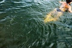 Swimmingin de femme l'océan image stock