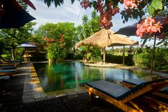 Swimmingpool in einer tropischen Rücksortierung Lizenzfreie Stockfotografie