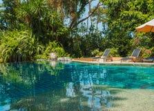 Swimmingpool im tropischen Wald Stockfotos