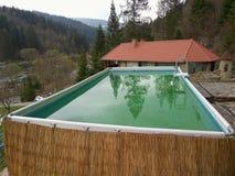 Swimmingpool im Wald Stockfotos