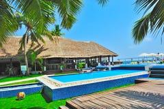 Swimmingpool mit Kokosnussbaum Stockfotos