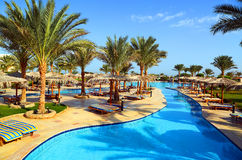 Swimmingpool mit Palmen Stockfotografie