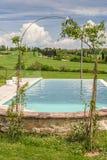 Swimmingpool mit Zierpflanzen Stockfotos