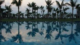 Swimmingpool morgens Stockbild