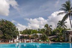 Swimmingpool, Palmen und Himmel Stockfotografie
