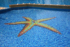 Swimmingpool Starfish Stockfoto