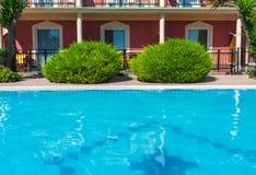 Swimmingpool und grüne platns lizenzfreie stockfotografie