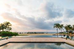 Swimmingpool und Kokosnussbäume Stockfoto